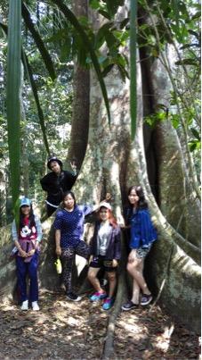 khao-yai-environment-4